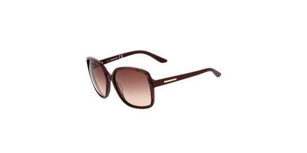 Dámské hranaté kaštanové sluneční brýle Miss Sixty