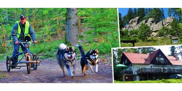 3denní pobyt na Valašsku včetně jízdy se psím spřežením pro dva