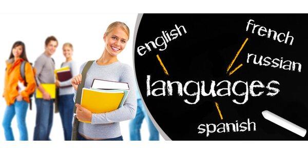15x90minutová lekce cizího jazyka