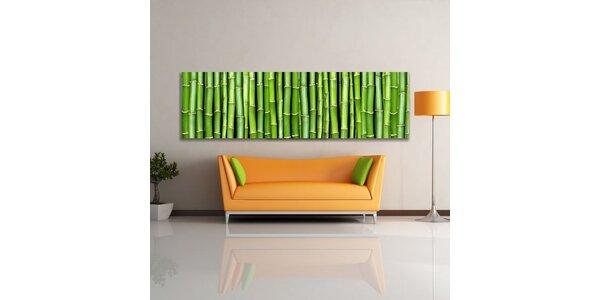 Bambusová fantazie