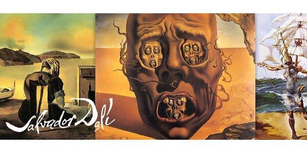 Dvě vstupenky na Salvadora Dalí
