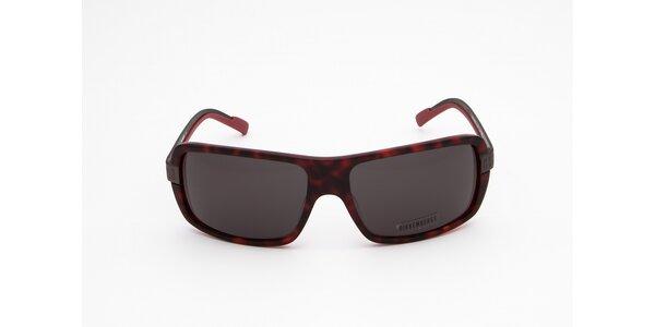 Pánské vínovo-černé sluneční brýle Bikkembergs