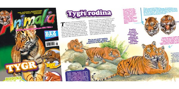 Předplatné nového časopisu o zvířatech Animalia