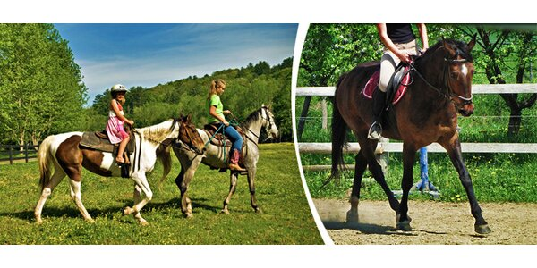 Vyjíždky na koních jarní přírodou