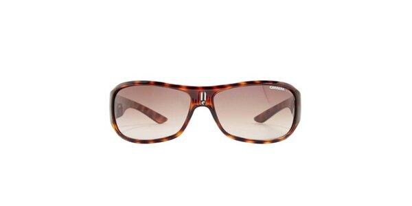 Pánské zaoblené hnědě žíhané sluneční brýle Carrera