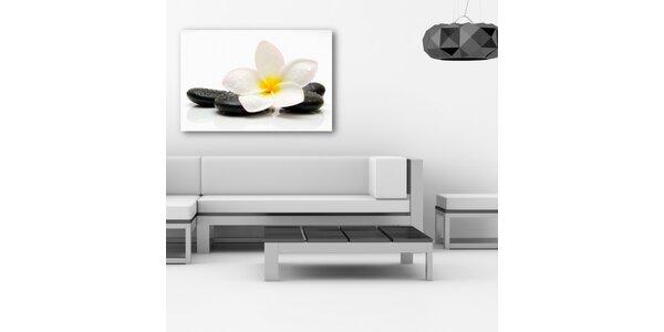 Bílá orchidej a lávové kameny