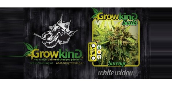 249 Kč za 5 ks feminizovaných semínek konopí White Widow.