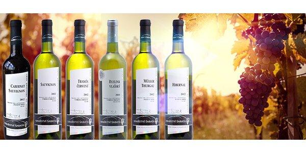 6 suchých přívlastkových vín z rodinného vinařství