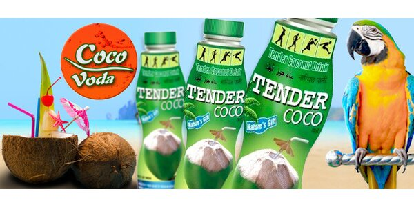 6 litrů populární a zdraví prospěšné kokosové vody