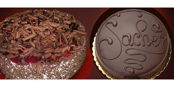 Lahodný domácí dort - výběr ze tří druhů