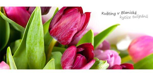Kytice čerstvých holandských tulipánů pro vaši lásku
