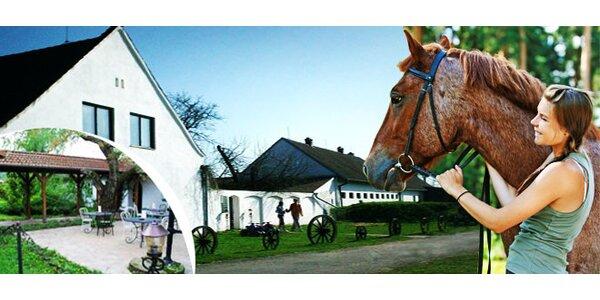 Třídenní letní pobyt na farmě s polopenzí a vyjížďkou na koni