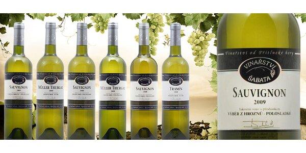 6 přívlastkových vín z vinařství Šabata