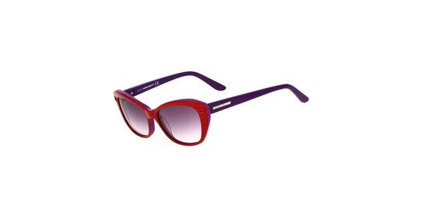 Dámské červeno-fialové kočičí sluneční brýle Miss Sixty
