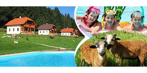 Týdenní pobyt na chatě s bazénem pro 4 nebo 8 osob