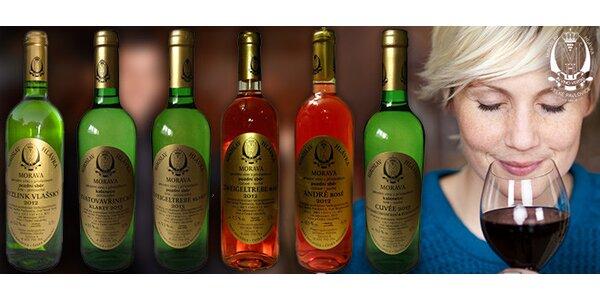 Kolekce 6 vín z moravského vinařství Hlávka