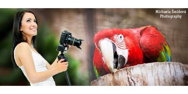 Zábavný kurz fotografování v pražské ZOO