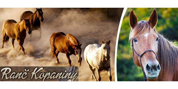 Týdenní jezdecký tábor na ranči mezi Brnem a Vyškovem