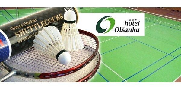 95 Kč za hodinový pronájem badmintonového kurtu!