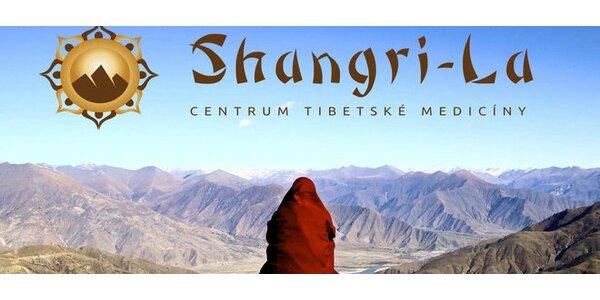 Tibetská hluboká masáž celého těla - 90 minut a další procedury