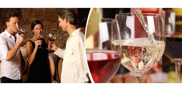 Ochutnávka vín ve vinném sklípku v Pavlově - degustace a následná volná…