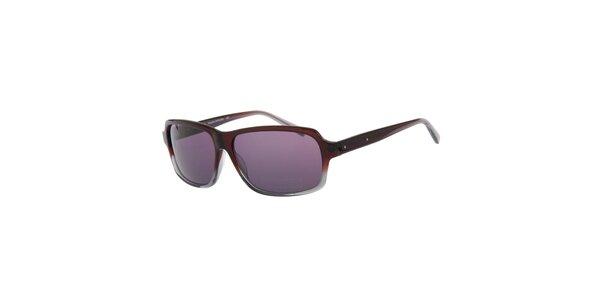 Pánské vínovo-šedé sluneční brýle Michael Kors