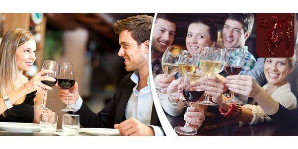 Neomezené pití vína ve vinárně u Janáčkova divadla