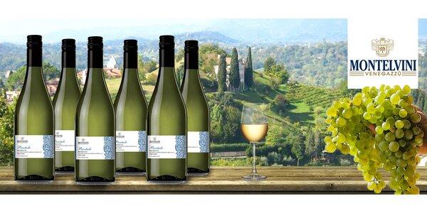 6 lahví vína Prosecco DOP Treviso Frizzante