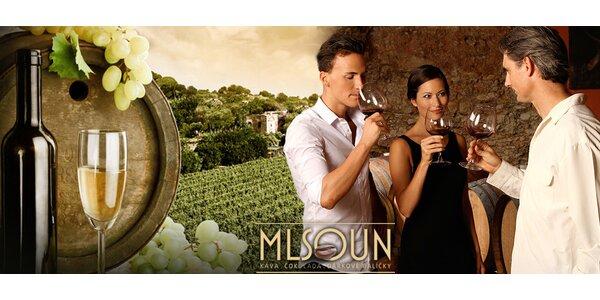 Řízená degustace špičkových vín, čokolád či kávy