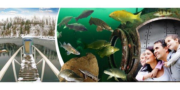 Rodinný vstup do kouzelného světa pod vodou