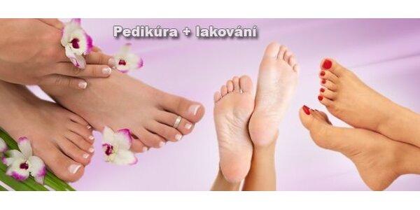 Pedikúra včetně lakování a parafínový zábal na nohy nebo ruce. A 20% sleva na…