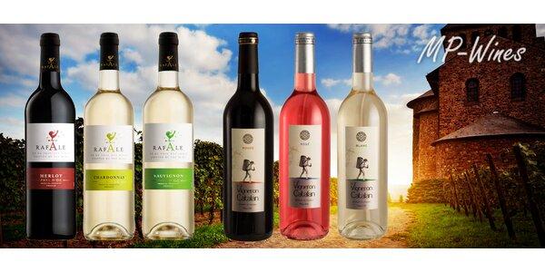 Set 6 francouzských nebo italských vín