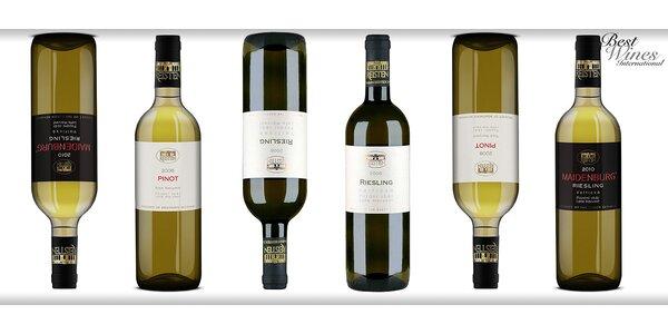 6 mimořádných bílých vín z vinařství Reisten