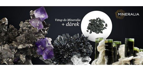 Rodinný vstup do Mineralie a 1 kg léčivého šungitu