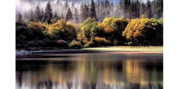 Břeh jezera