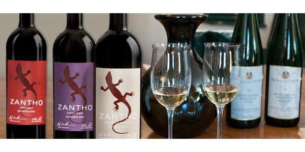4 luxusní vína z Německa a Rakouska