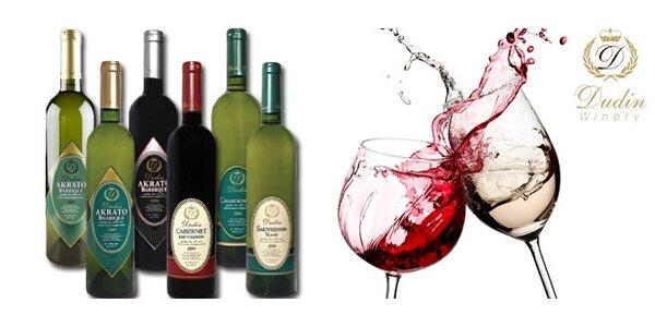 Sada 4 archivních vín z rodinného vinařství Dudin