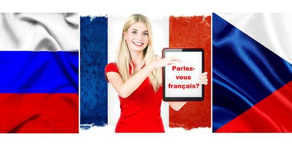 Individuální kurz - Angličtina, Francouzština, Základy ruštiny nebo Čeština pro…