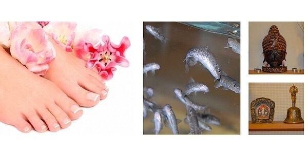 Péče o nohy s rybičkami Garra rufa v salonu Gjalmo pro 2 osoby