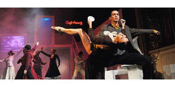Vstupenka na taneční představení Café Aussig