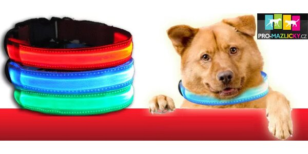 Svítící LED obojek PETTY pro Vašeho pejska