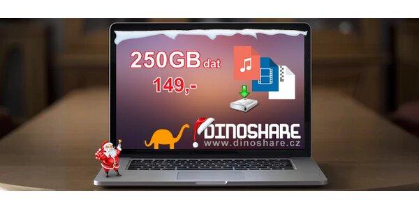 Vánoční 50% sleva na 250 GB videa, hudby a dat