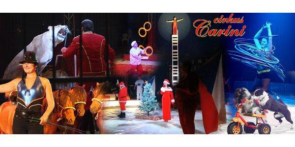 Lístky na Vánoční show Cirkusu Carini