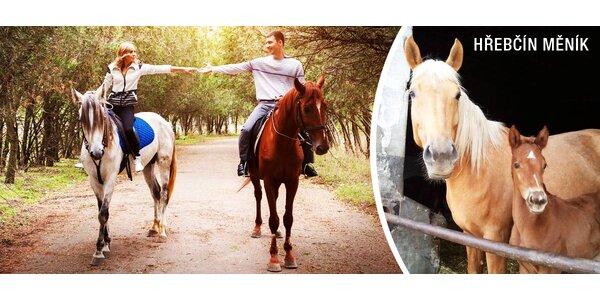 Romantická vyjížďka na koni nebo lekce jízdy s instruktorem
