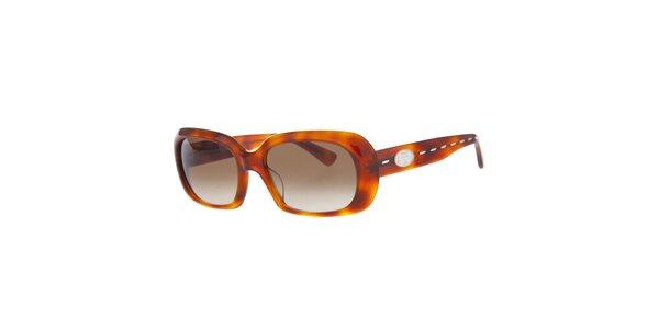Dámské karamelové želvovinové sluneční brýle Fendi
