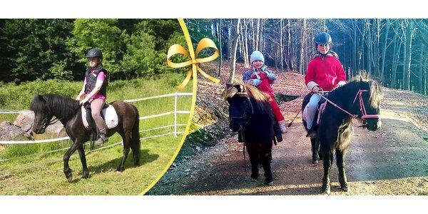 Potěšte děti projížďkou na poníkovi