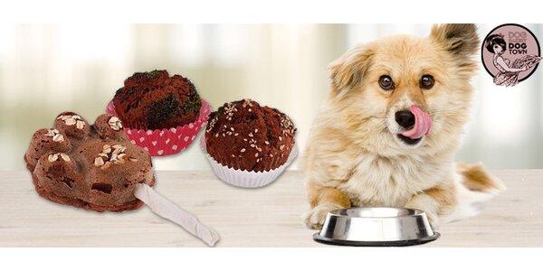 Originální dárek pro psy - domácí pamlsky z Psí pekárny Dogtown