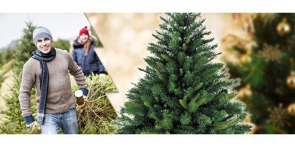 České vánoční stromky - smrk, jedle i borovice