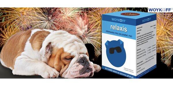RELAXIS - a Váš pes se nebude bát dělobuchů ani na Silvestra