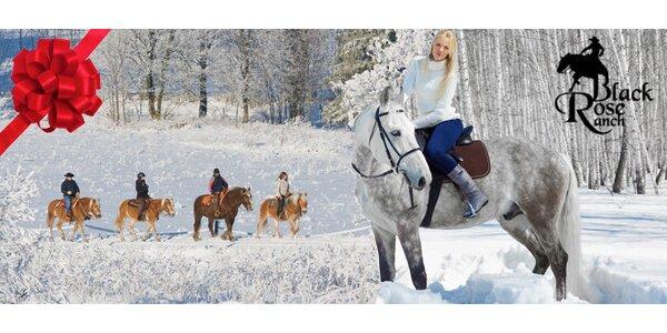 Hodinová vyjížďka na koni - vhodné i jako dárek pro Vaše blízké